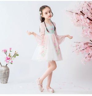 Chinese Style, Girl Dress, Costume, Birthday Dress