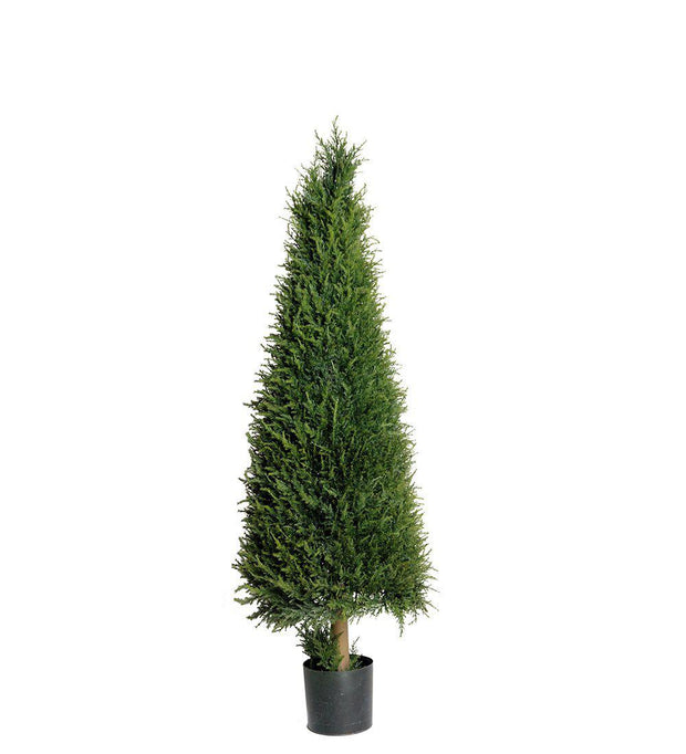 Mr Plant En 110 cm - Interior 55