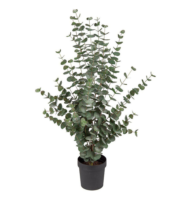 Mr Plant Eucalyptus 110 cm - Interior 55