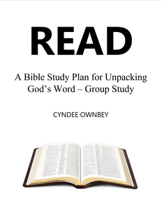 READ Bible Study for Groups (eBooks)