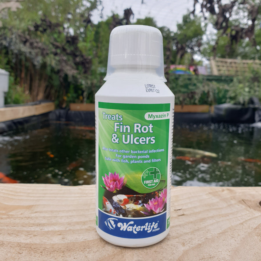 Waterlife Fin Rot and Ulcers Treatment (Myaxin P) small