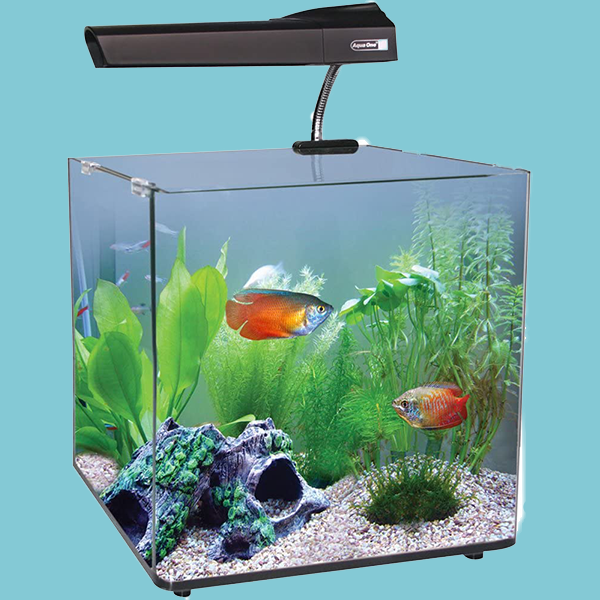 Aqua One AquaNano 40L Aquarium