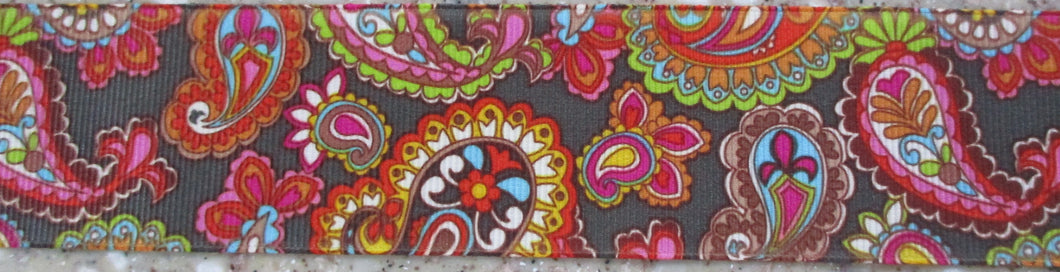 Paisley...Colorful on Brown