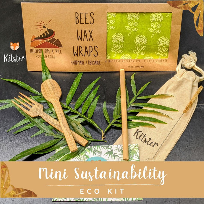 Mini Sustainability Kit