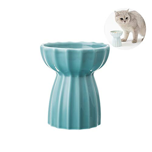 Pidan Handmade Raised Ceramic Cat Bowl with Stand