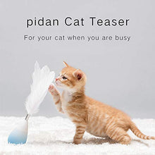 Load image into Gallery viewer, Pidan Tumbler Ball Rain Drop Roly-Poly Feather Teaser Anti-Scratch