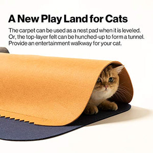 Pidan Cat Play Mat Fun Tunnel Activity Rug Toy for Indoor (2 PCS)