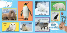 Load image into Gallery viewer, My First 101 Animals Padded Board Book