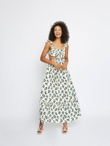 Lemon and Pear Print Maxi Dress