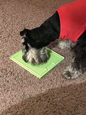 Slow Feeder Dog Mat & Boredom Buster