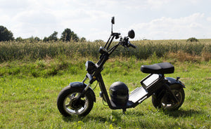 Harley City Coco Scooter - Practical Consideration before Buying