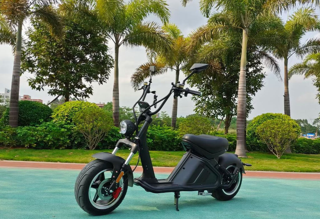 Fat tire scooter M2