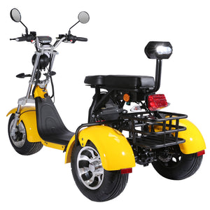 Citycoco trike, 60V 40AH, Ship from Holland, EEC/COC certified, Free Shipping and TAX - Fanco Electric Scooter manufacturer