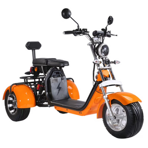 Fat tire tricycle for adults trike citycoco 2000w with Delivery Basket free shipping and tax - Fanco Electric Scooter manufacturer