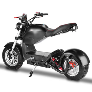Citycoco 3000W, EEC/COC certified, factory wholesale price - Fanco Electric Scooter manufacturer