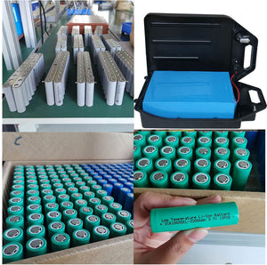 60v 12ah lithium battery for citycoco scooter - Fanco Electric Scooter manufacturer