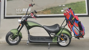 Street legal Fat tire golf scooter 2000W M1 - Fanco Electric Scooter manufacturer