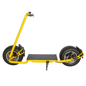Side Fork Sports Electric Citycoco Scooter - Fanco Electric Scooter manufacturer