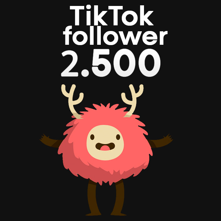 TikTok Follower + Interaktionen