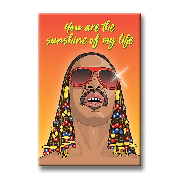 Stevie Wonder Magnet