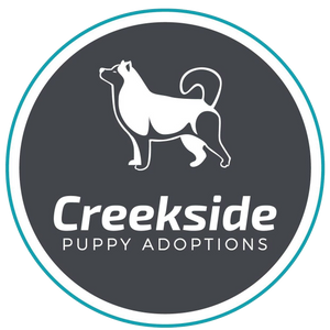 Creekside Puppy Adoptions