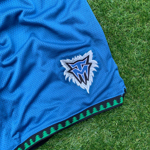 2000's Minnesota Timberwolves Heavy Mesh Authentic Shorts by Adidas-Locker Room Clt