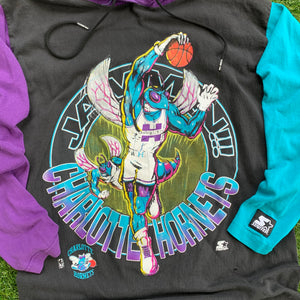 90's Charlotte Hornets Color Blocked Hoodie by Starter-Locker Room Clt