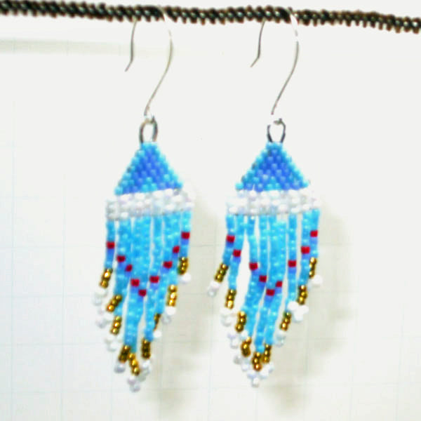 Abigail Indian Fringe Earrings front view