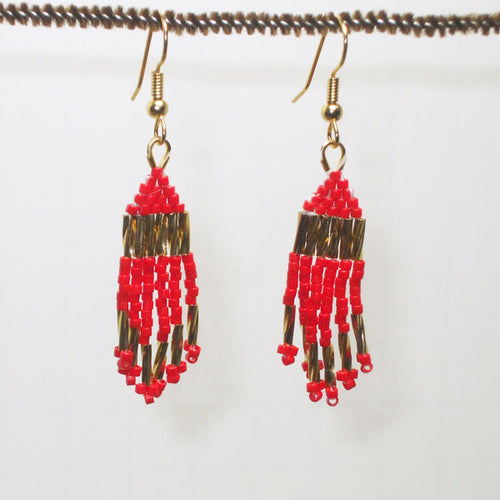 Fayre Indian Fringe Earrings front relevant view