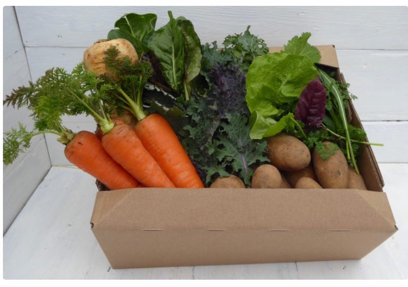 5. Small Vegetable Box