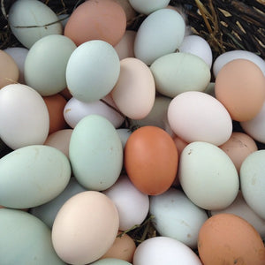MURRAY'S FARM GRADE A HERITAGE EGGS - LARGE - ONE DOZ (4618929766451)