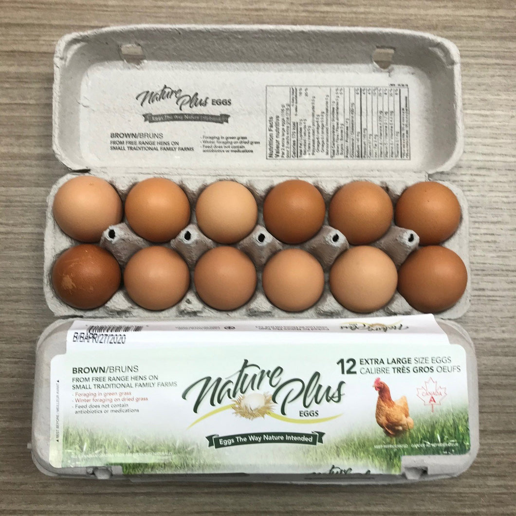 NATURE PLUS - FREE RANGE XL BROWN EGGS - DOZEN (4618923868211)
