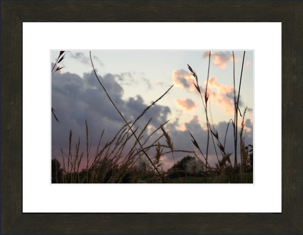 A Wild Evening by Lowe in a 10 x 15 print Framed with mat in an Espresso Walnut Frame - Schmidt Fine Art Gallery