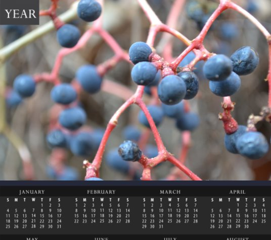 Austrian winter Berries Calendar - Schmidt Fine Art Gallery