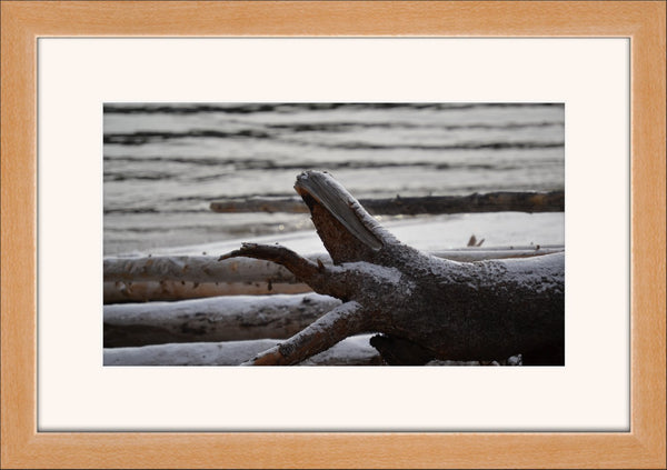 Banff Log on the Lake in a 12x 18 Frame - Schmidt Fine Art Gallery