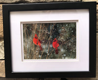 Cardinal Love .. Birds in Winter in a 5 x 7 Print with White mat and Black Frame - Schmidt Fine Art Gallery