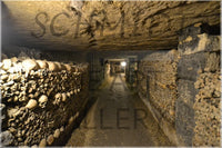 Catacombs of Paris in a 12 x 18 Metal Print - Schmidt Fine Art Gallery