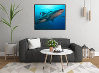 Up Close and Personal Shark in a 16 x 20 Canvas - Schmidt Fine Art Gallery