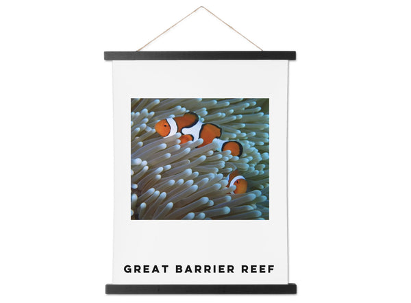 Clown Fish and Sea Anemone on the Great Barrier Reef in a Hanging Canvas - Schmidt Fine Art Gallery
