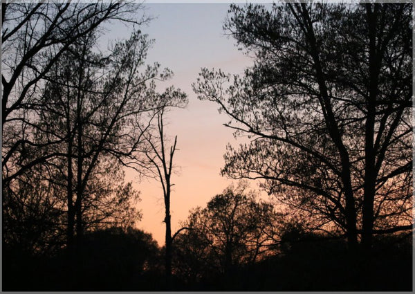 Arkansas Sunset in a 5 x 7 Print - Schmidt Fine Art Gallery