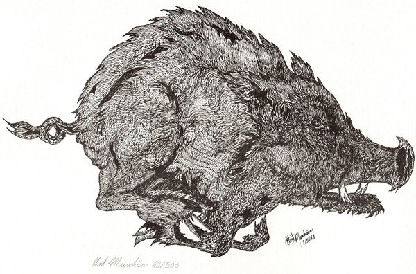 Hand Drawn Black and White Arkansas Razorback Limited Edition Print 14 x 11 - Schmidt Fine Art Gallery