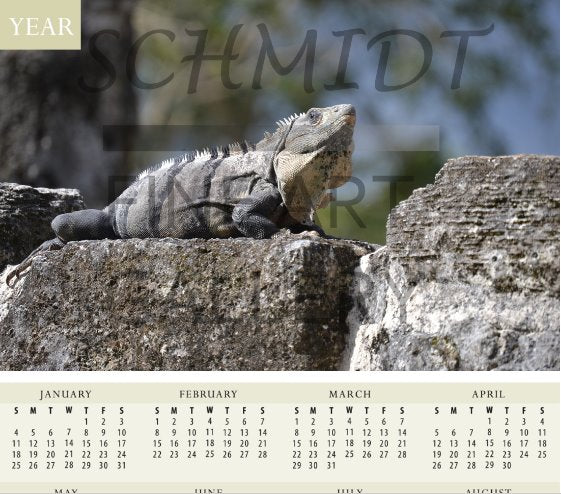 Iguana Basking on a Mayan Temple Calendar - Schmidt Fine Art Gallery