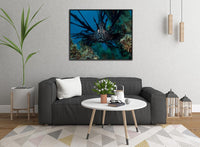 Lion Fish in the Coral Sea in a 16 x 20 Canvas - Schmidt Fine Art Gallery