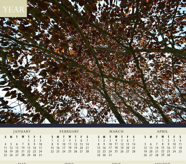 Mesmerizing Summer Leaves Calendar by Chalbaud - Schmidt Fine Art Gallery