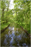Nymphenburg Palace Garden Canal in a 5 x 7 Print - Schmidt Fine Art Gallery