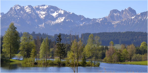 Spring Day Overlooking the German Alps in a 10 x 20 Wrap - Schmidt Fine Art Gallery