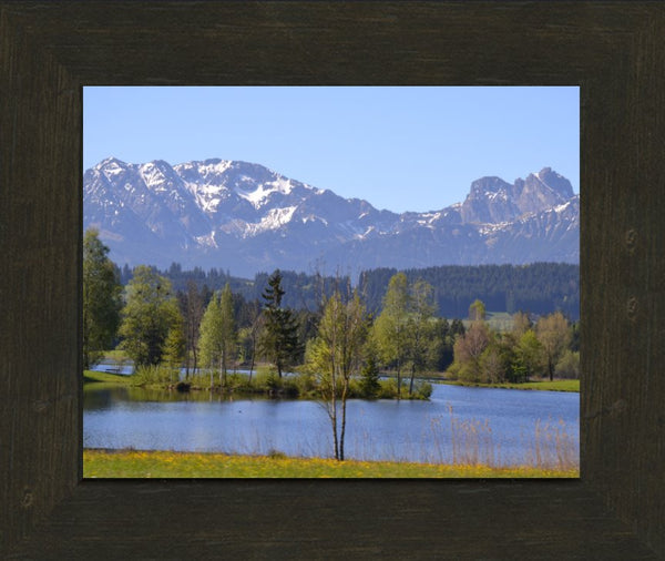 Spring Day Overlooking the German Alps in a 8 x 10 Print in an Espresso Walnut Frame - Schmidt Fine Art Gallery