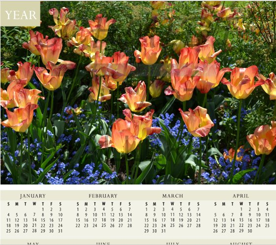 Spring multi colored flowers of Rothenburg ob der Tauber Calendar - Schmidt Fine Art Gallery