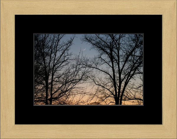 The Cornflower Blue Sky in an 8 x 12 Print Framed with Black Mat - Schmidt Fine Art Gallery