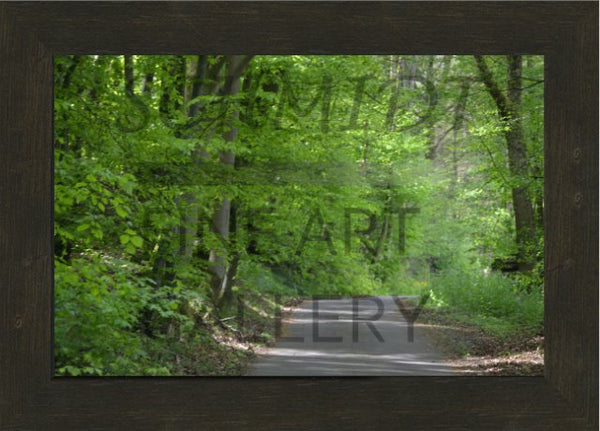 Trail on the banks of the Tauber River in a 10 x 15 Framed Print - Schmidt Fine Art Gallery